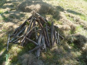 Maison bois 3 ptits cochons